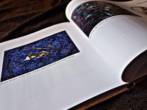 Catalogo Zeitgeist di Daniela Bellofiore